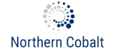 Northern Cobalt Ltd